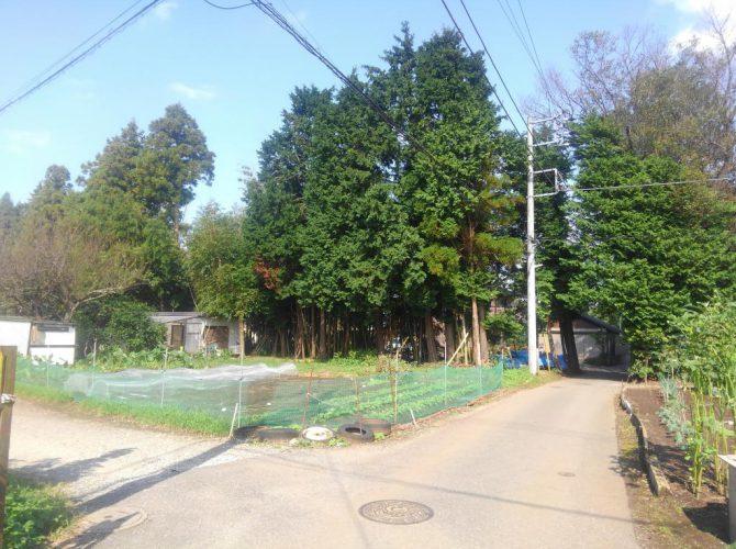 千葉市緑区誉田町 売地【家庭菜園】に最適♪